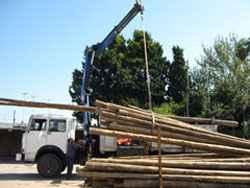 Transporte y colocación de postes de alumbrado
