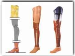 Prótesis para amputación de miembros.