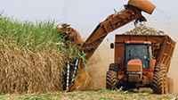 La producción de biocombustible creció 32%